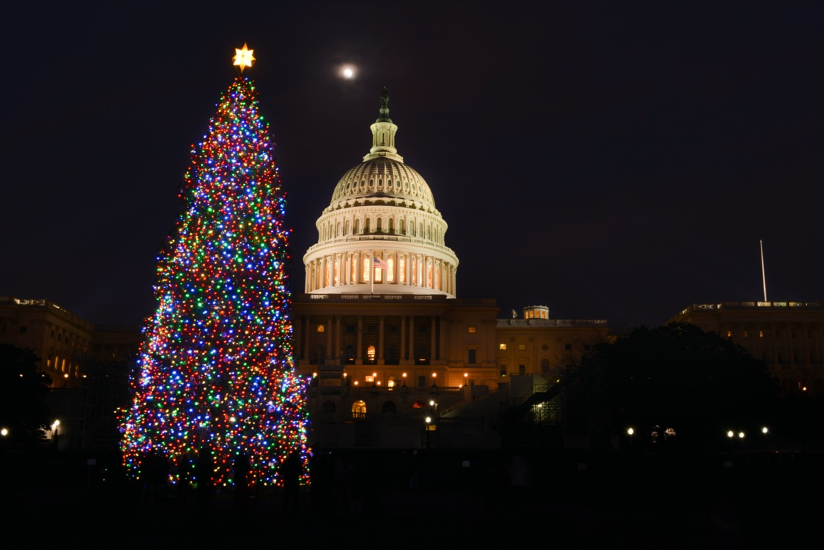 National Christmas Tree at night with Capitol in the background