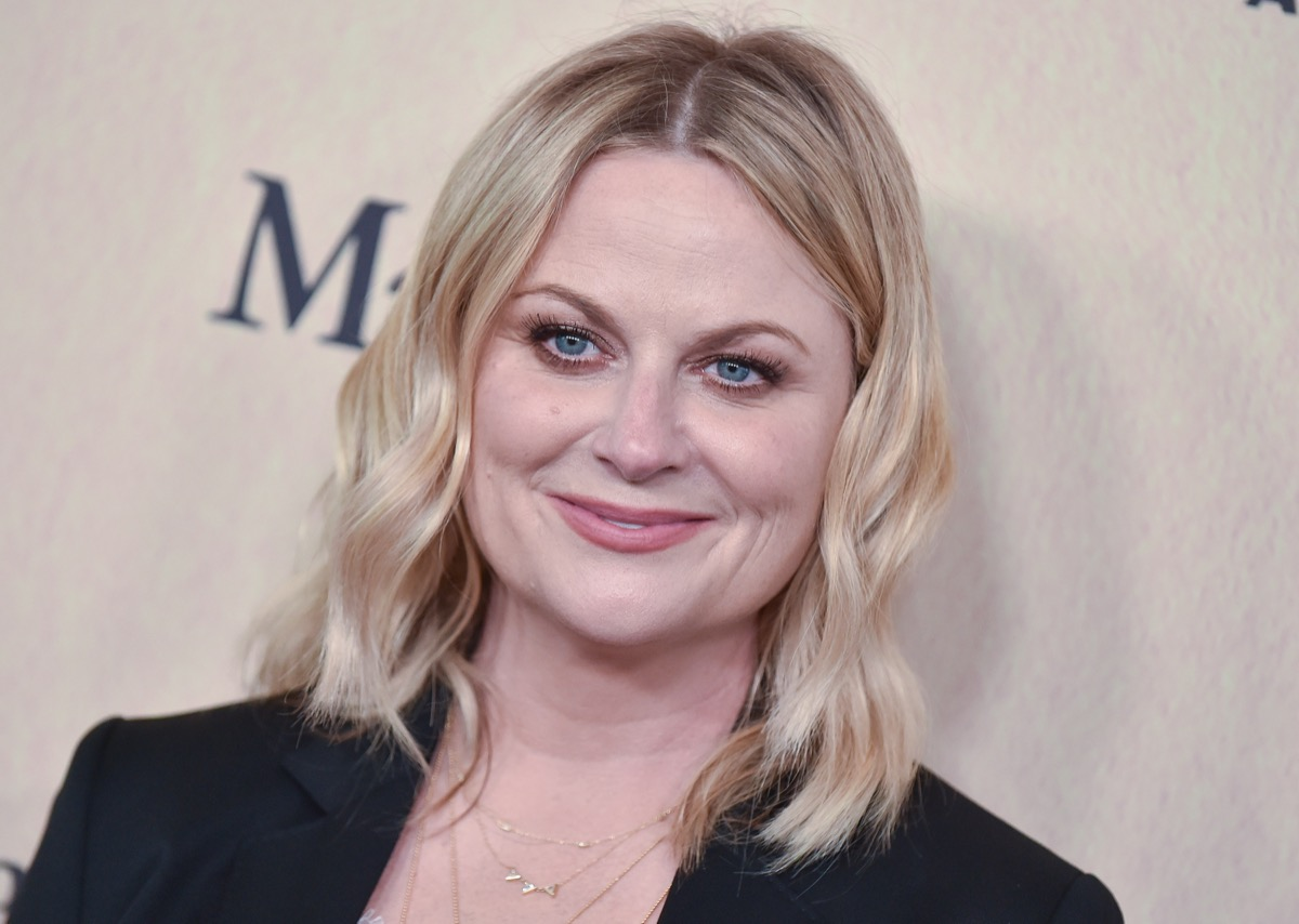Amy Poehler at the Women In Film Gala in 2019