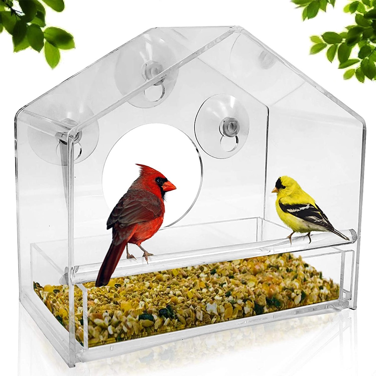 clear bird feeder with a red and yellow bird inside