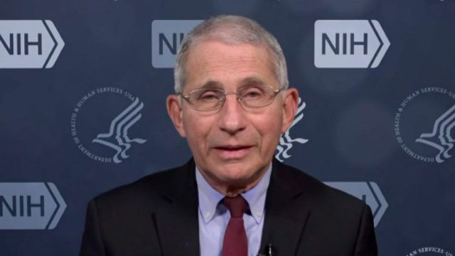 fauci talking to CNN about COVID surge