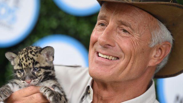 wildlife expert jack hanna holding wild cat baby