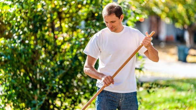 middle-aged man raking in yard