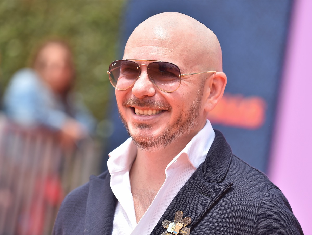 Pitbull at the premiere of 'Ugly Dolls' in 2019