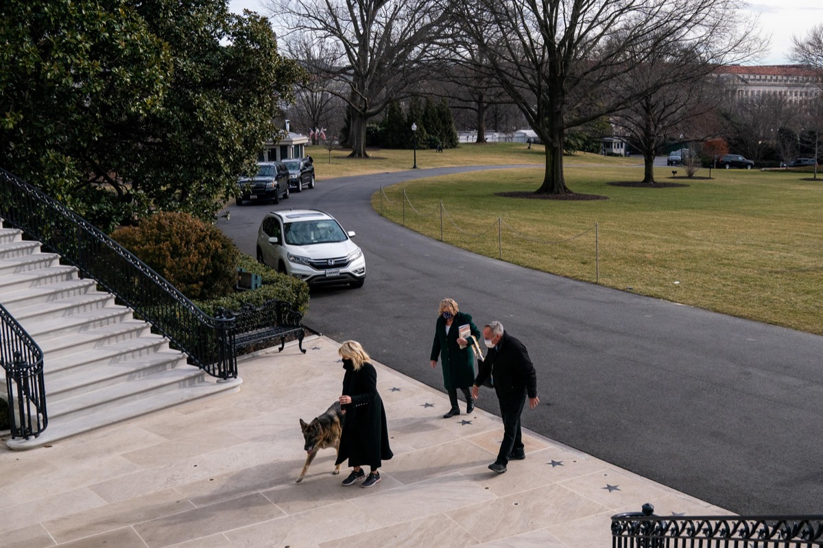 Jill Biden outside the White House with Champ and Major
