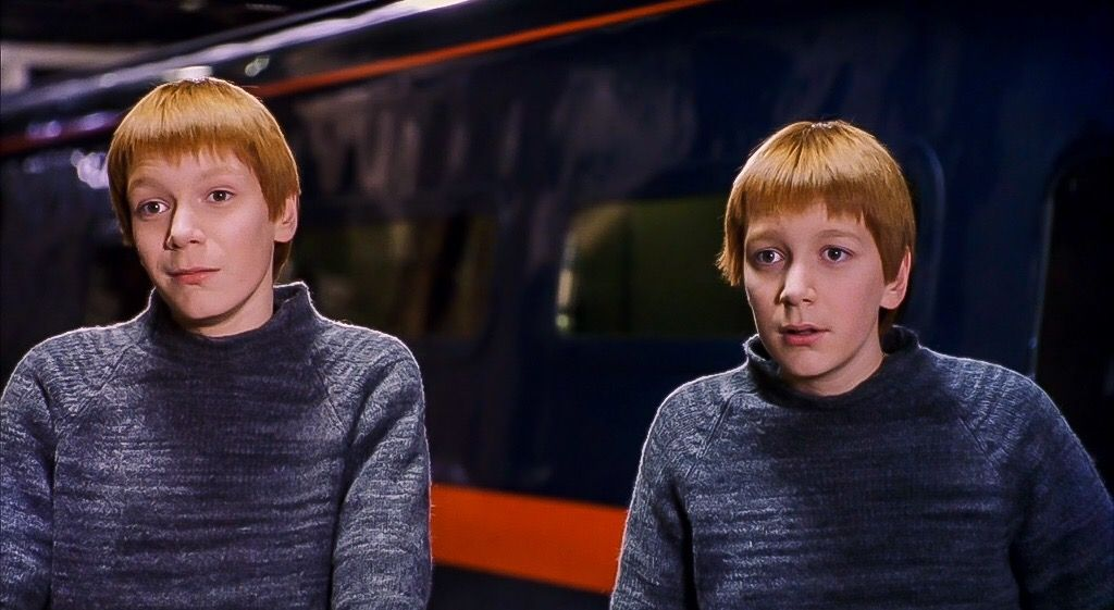 Fred and George Harry Potter