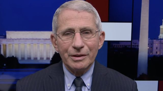 anthony fauci on rachel maddow talking about long COVID on jan. 23