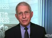 dr anthony fauci on meet the press