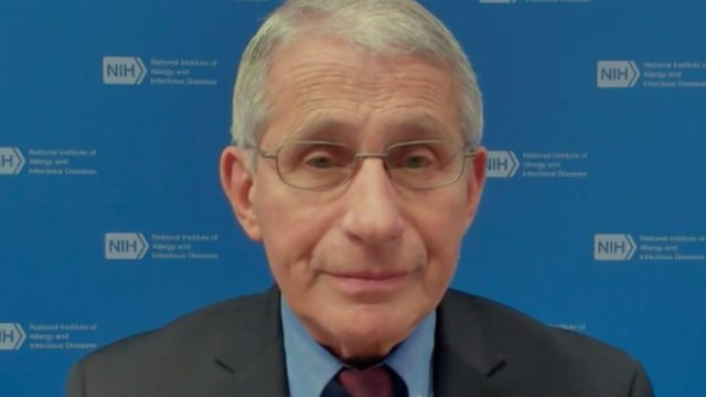Fauci discusses the new strains on MSNBC