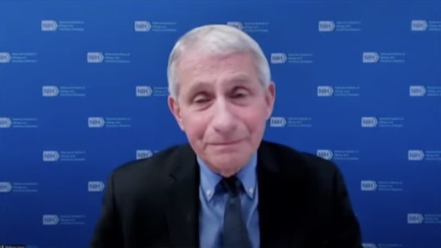 dr anthony fauci in front of a blue background wearing a blue shirt and black suit