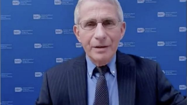 Fauci return to normal