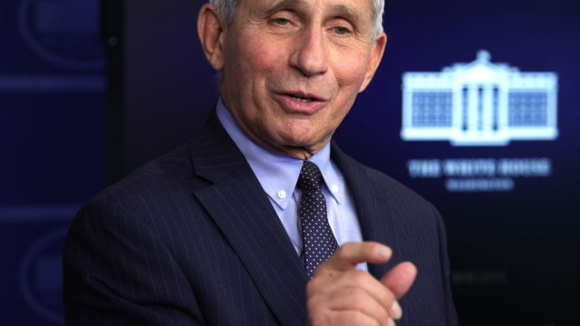 Anthony Fauci speaking at the White House press room