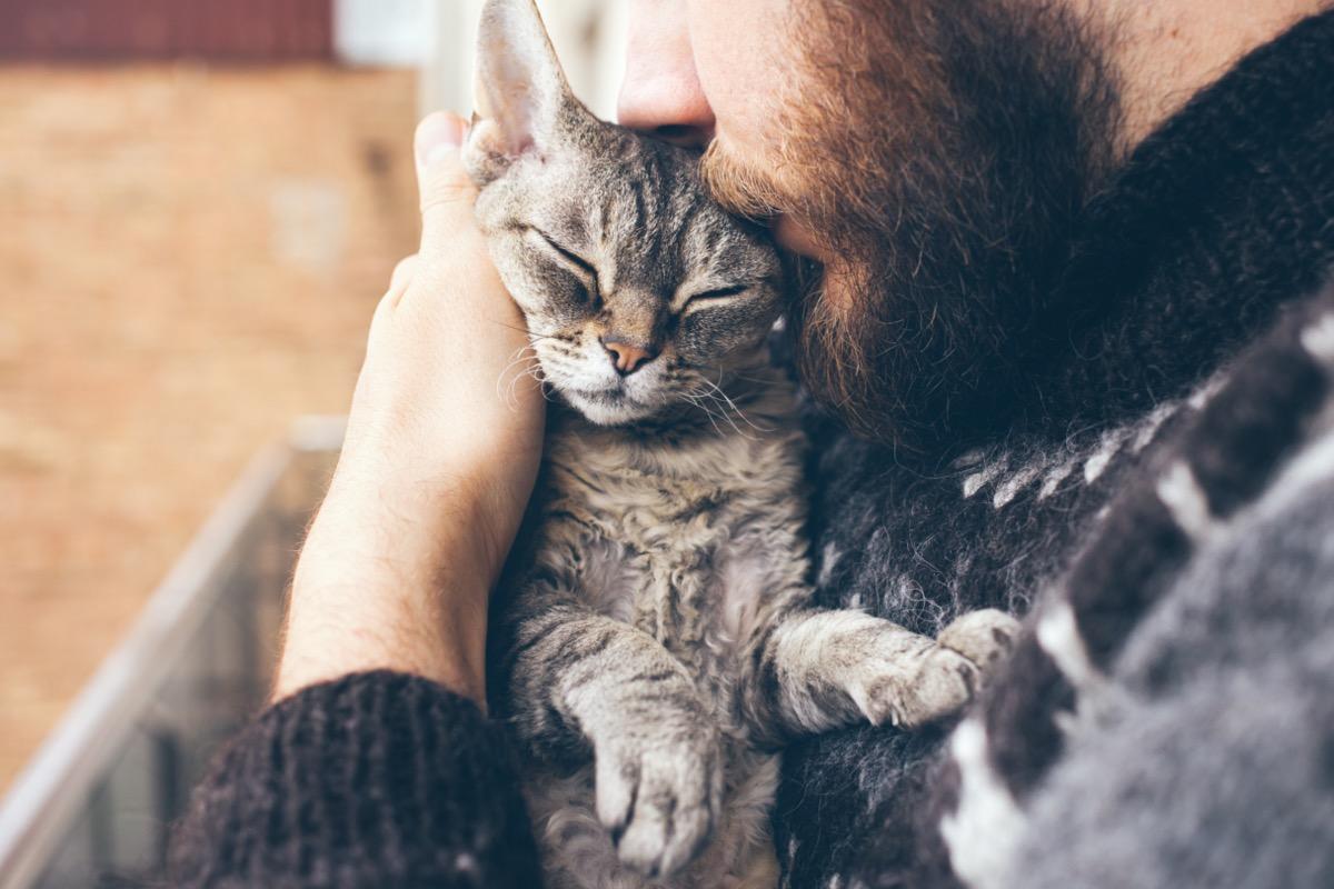 Man with beard cuddling grey cat