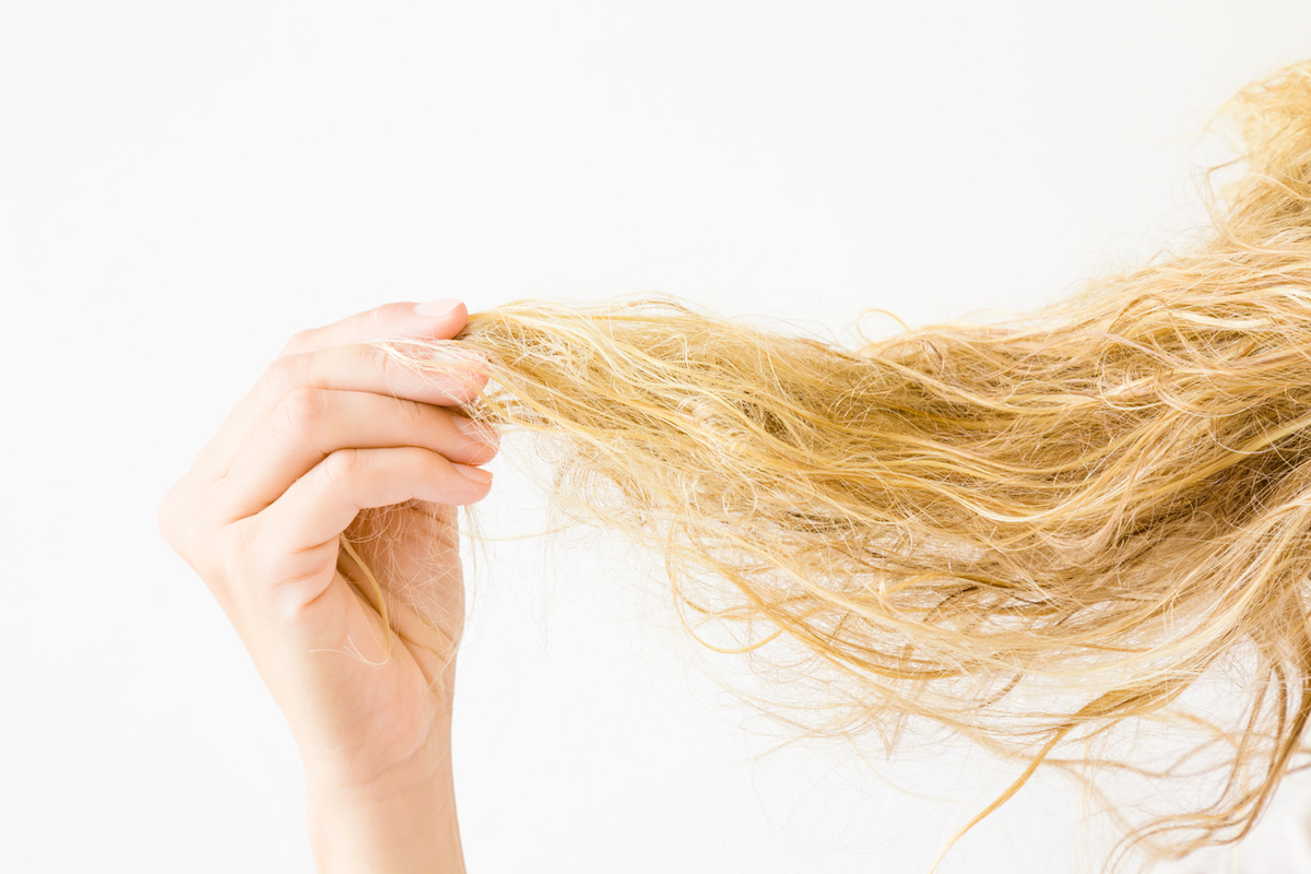 Woman's hand holding wet, blonde, tangled hair after washing on white background.