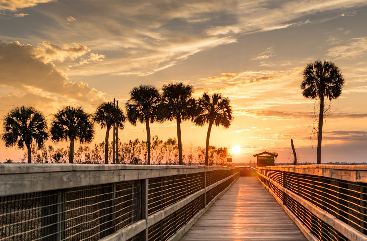 landscape photo of a pier in Gainesville, which is a town near Lake, City Florida