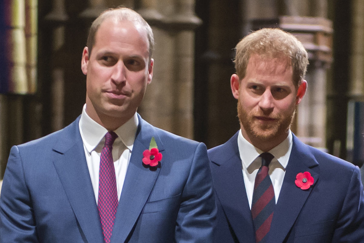 The Duke of Cambridge and the Duke of Sussex at the Westminster Abbey service marking the centenary Of WW1 Armistice