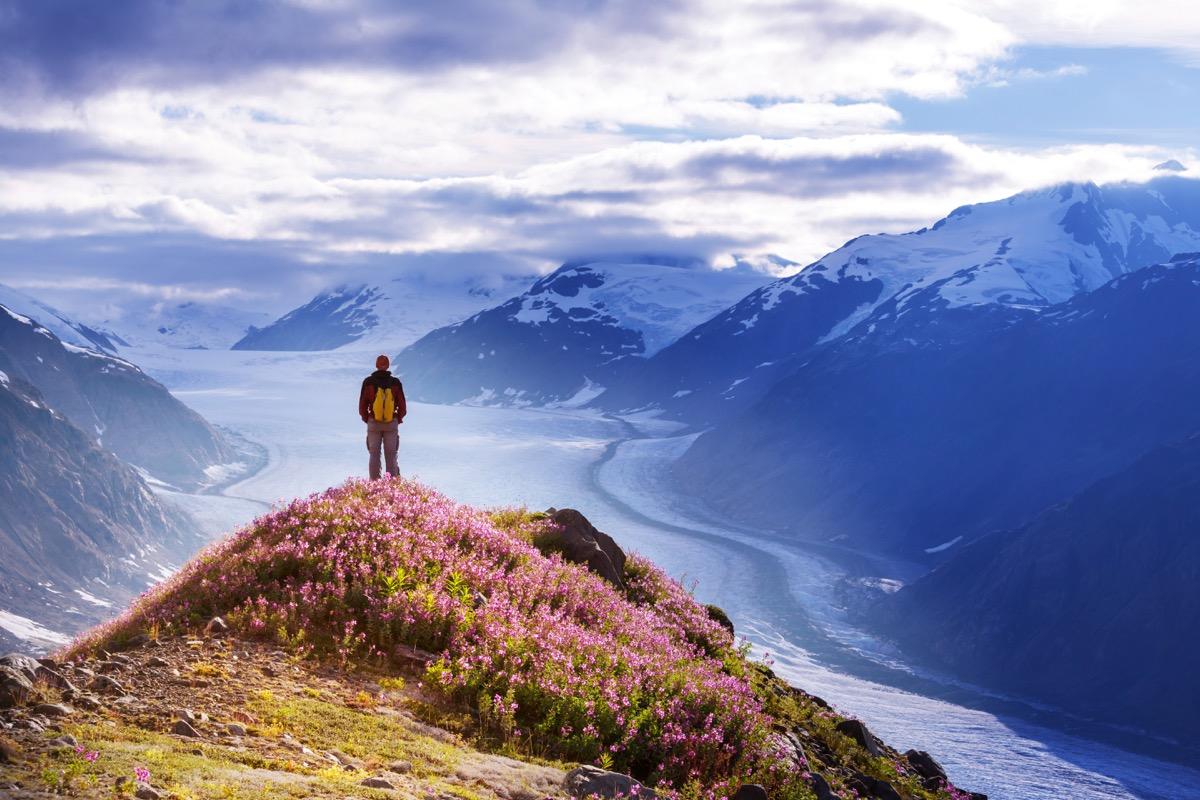 a man hiking in alaska duringthe summer
