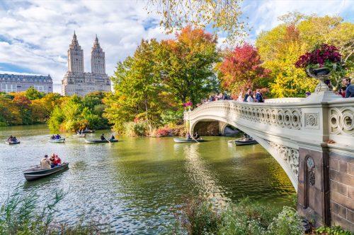 new york city, central park, lake, bridge