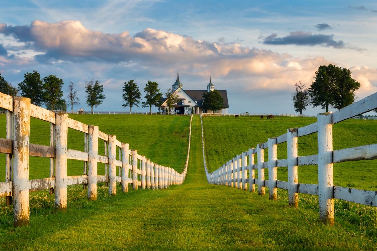 farm house in kentucky, grass