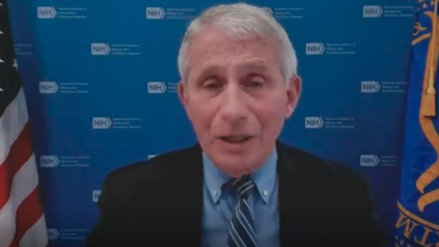 Dr. Anthony Fauci speaking during a virtual White House COVID-19 response team press briefing
