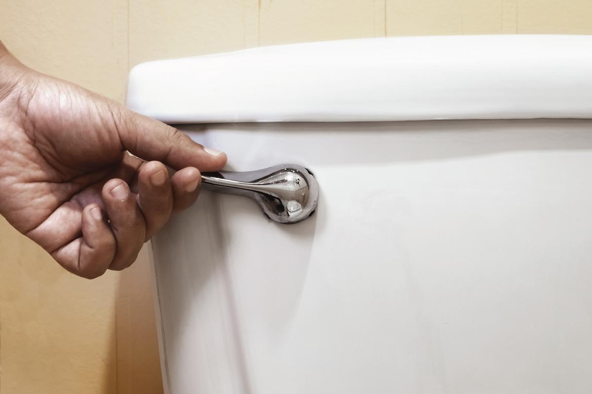 hand flushing toilet closeup