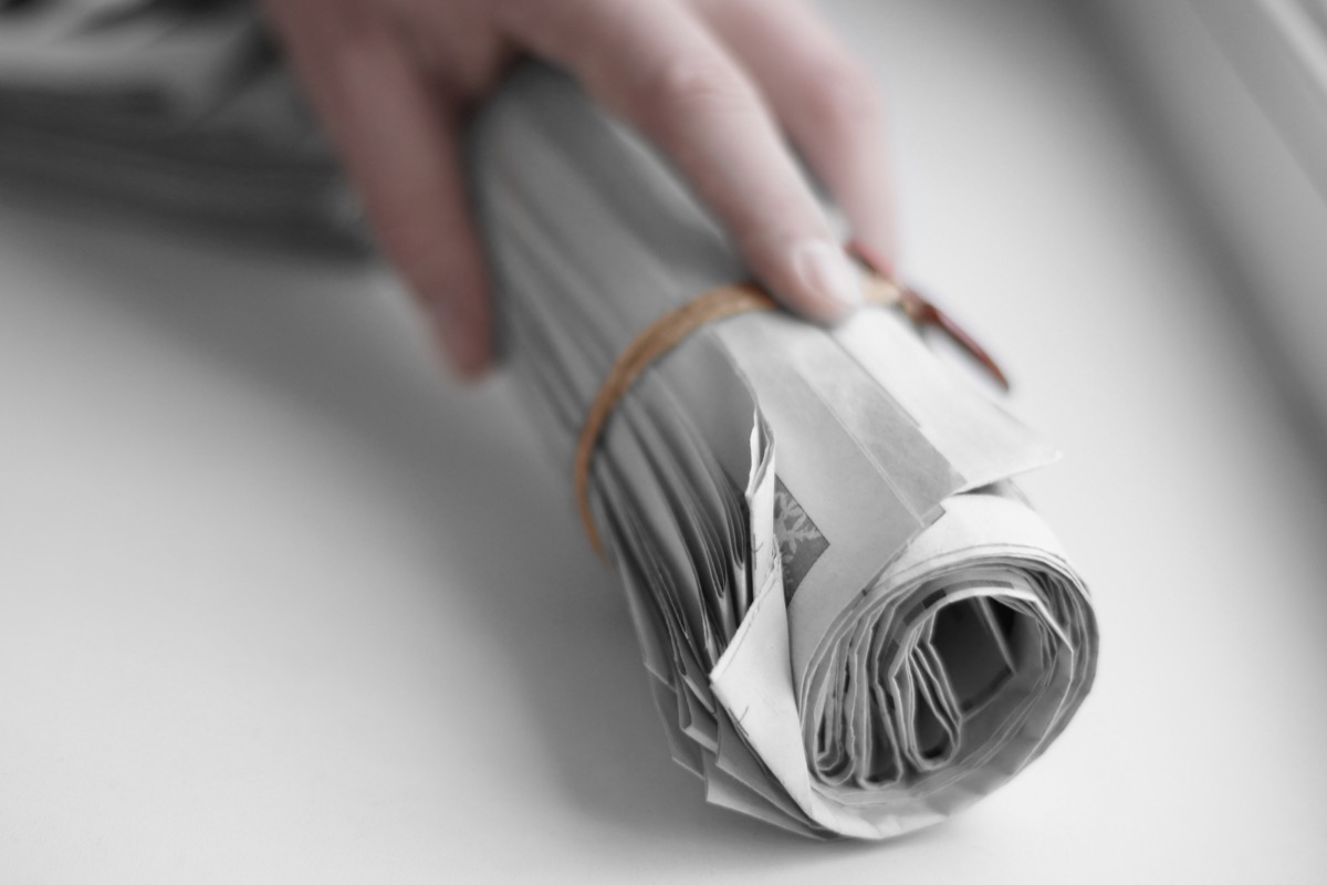 Rolled newspaper in hand