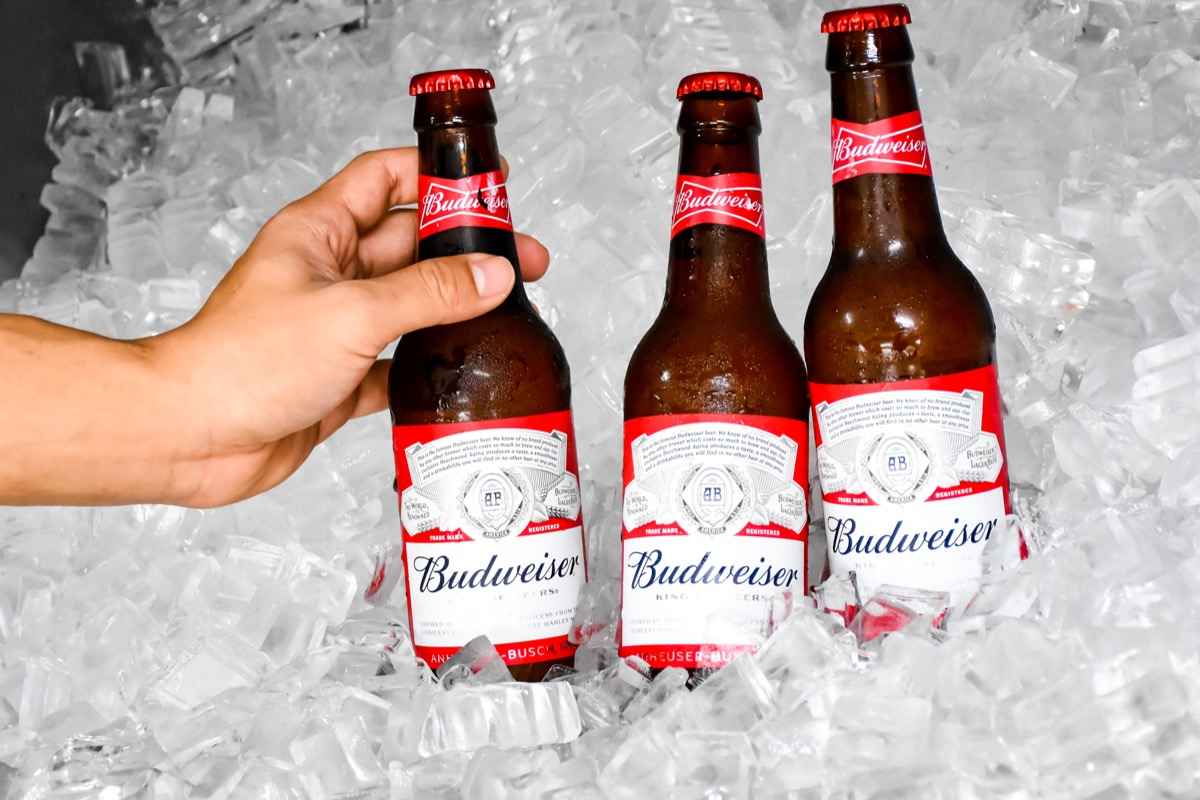 Three glass bottles of Budweiser in ice
