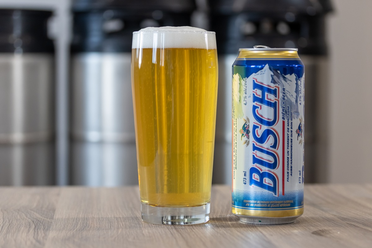 glass, can of busch beer