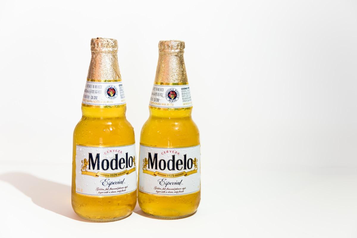 modelo beer in glass bottle