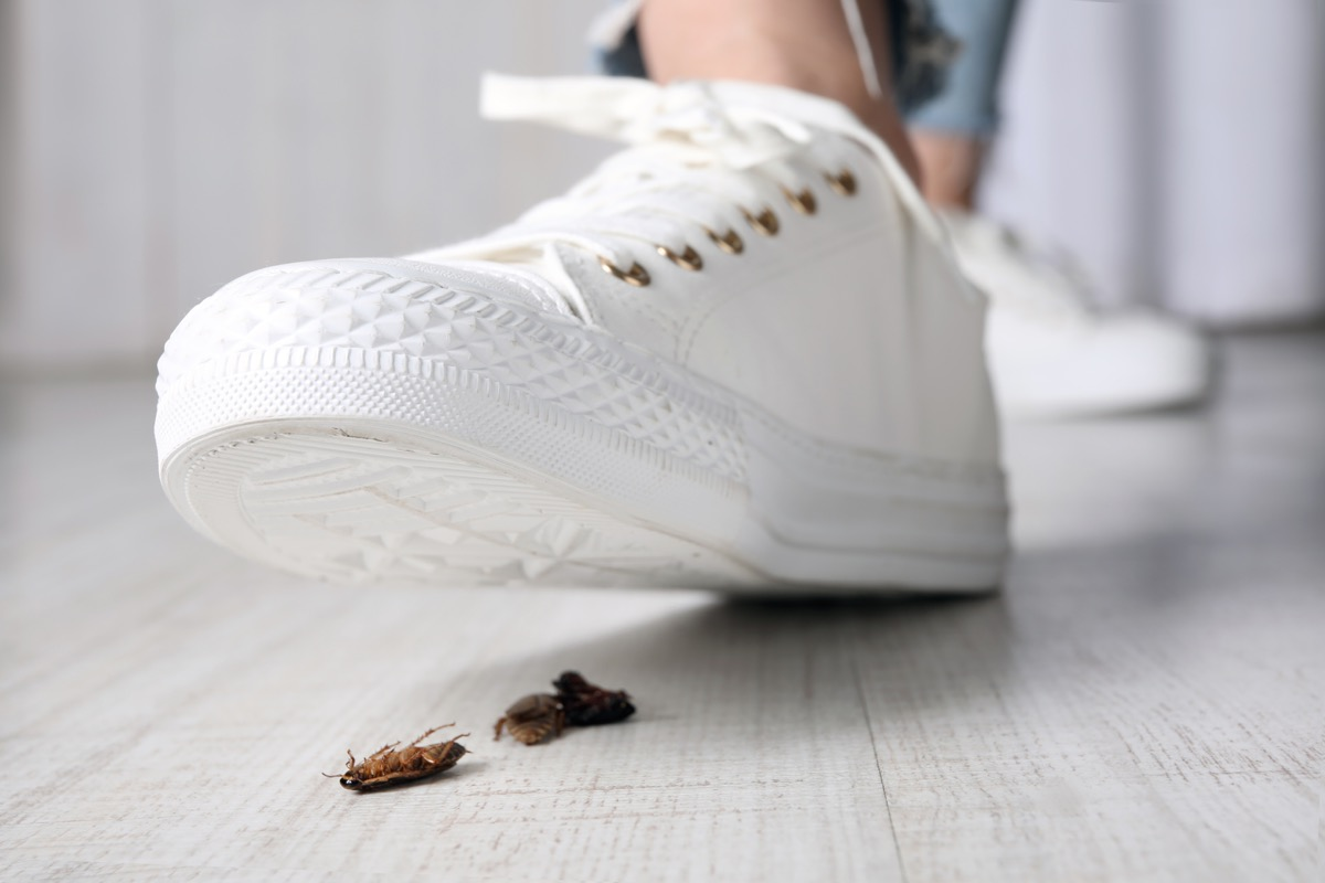 Woman stepping on cockroach