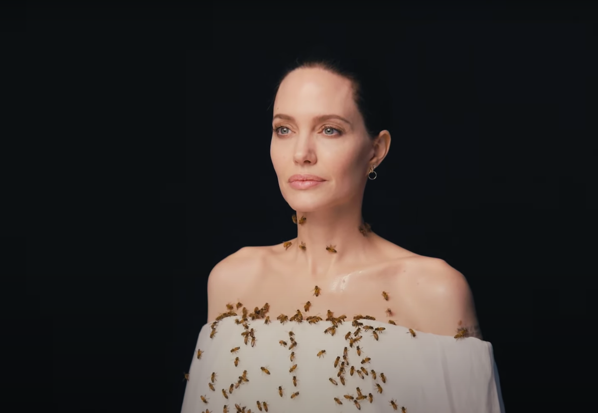 Angelina Jolie wearing a white dress while posing with bees