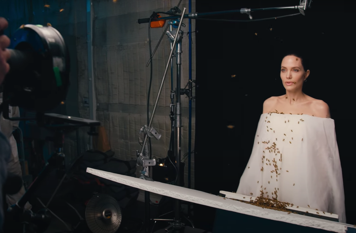 Angelina Jolie being photographed while covered in bees