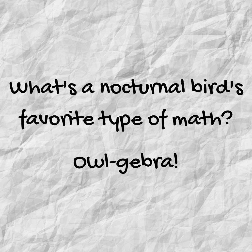"""""""What's a noctural bird's favorite type of math? Owl-gebra!"""""""