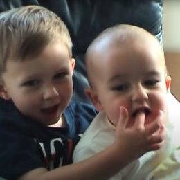 Harry Davies-Carr and Charlie Davies-Carr as children in the Charlie Bit My Finger viral video.