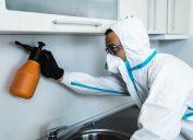 exterminator spraying in kitchen