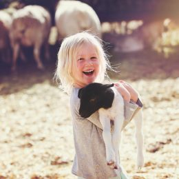 A young girl holding a baby lamb at a petting zoo