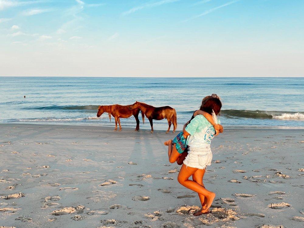 Assateague Island National Seashore in Maryland