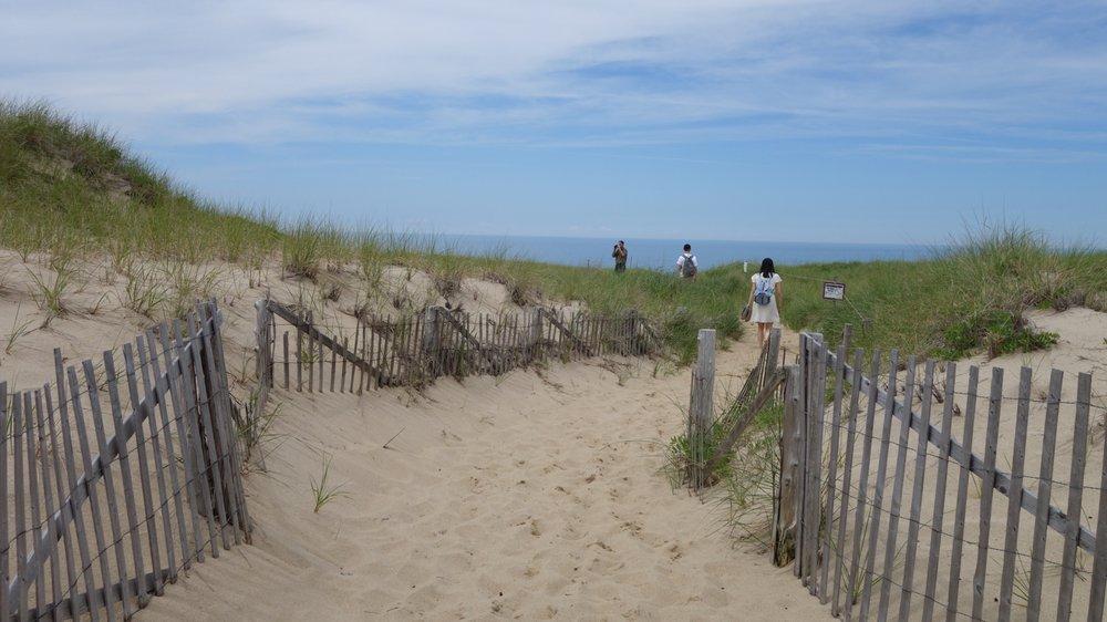 Race Point Beach in Massachusetts