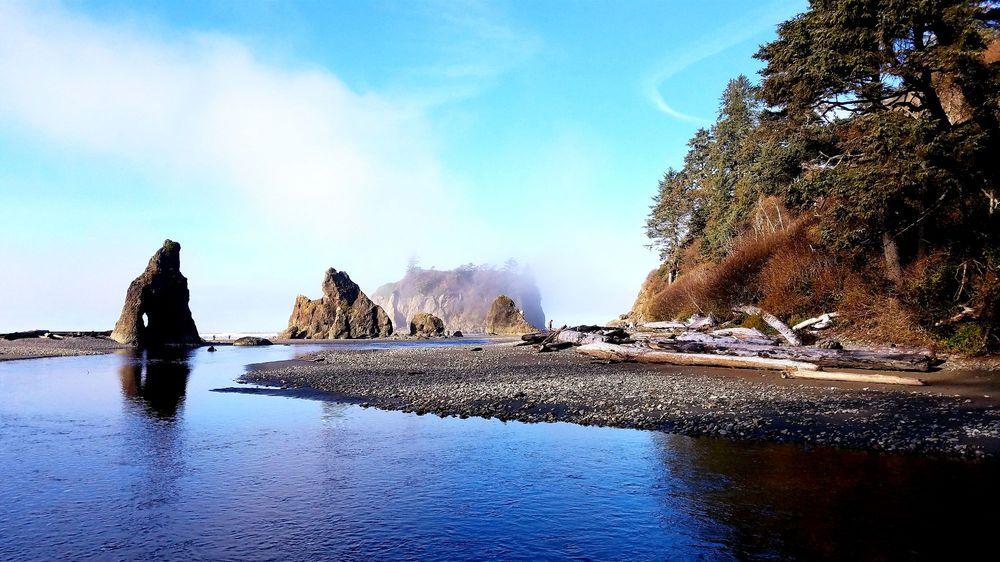 Ruby's Beach in Washington
