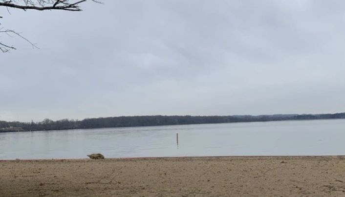 Beach in Tennessee