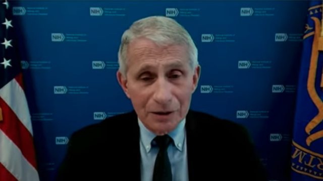 Dr. Anthony Fauci during a press briefing held by the White House COVID-19 task force