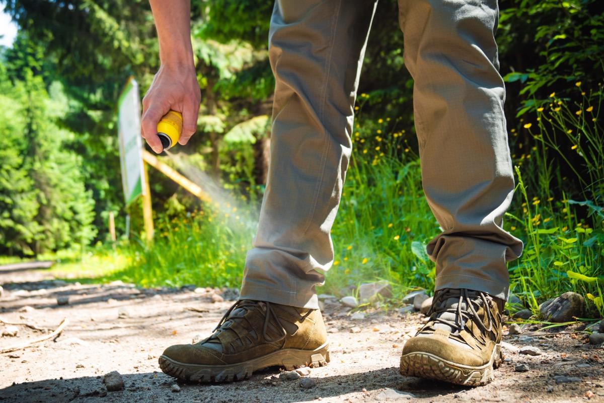 Man spraying for ticks