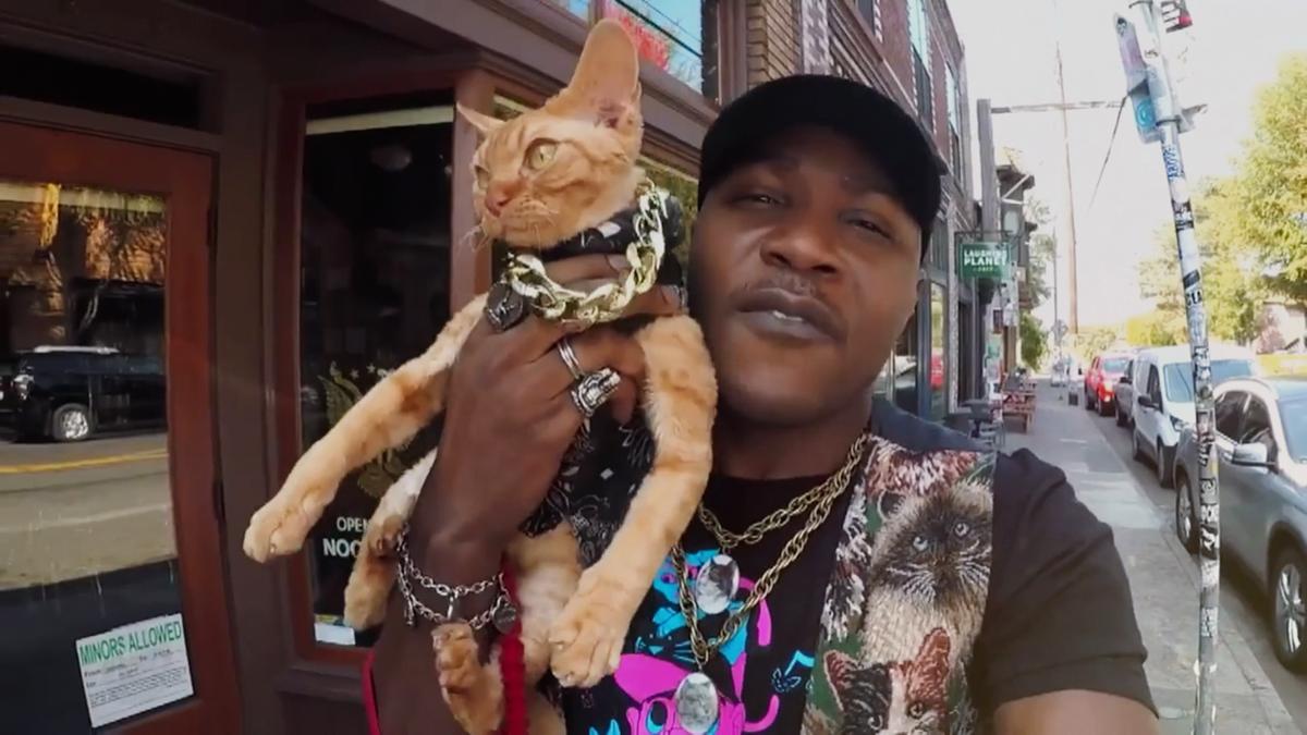IAmMoshow in Cat People