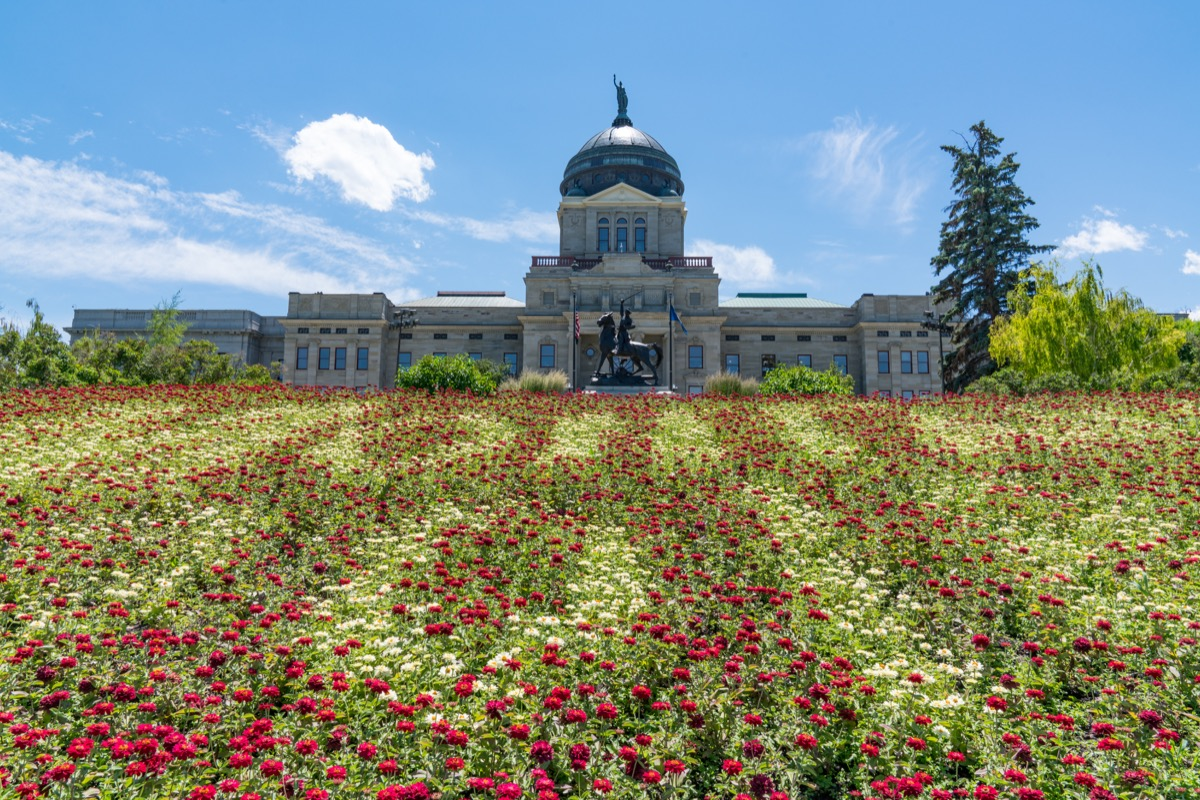 cityscape photo of the Montana State Capitol Building in Helena, Montana