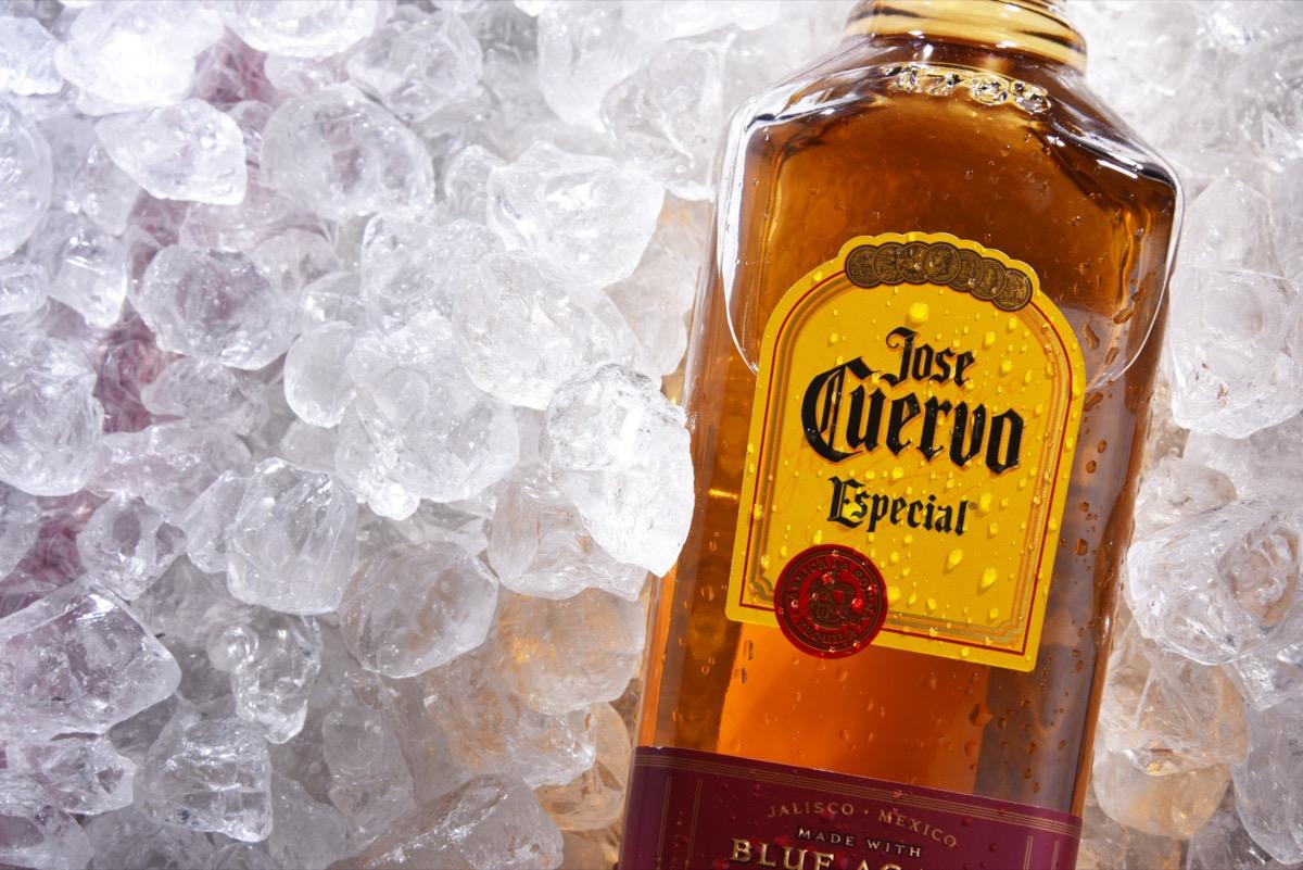 Jose Cuervo on ice
