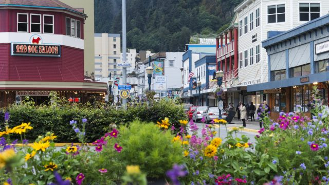 A shot of downtown Juneau, Alaska with flowers in the foreground