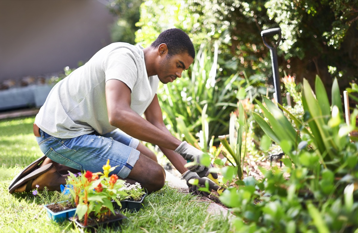 Cropped shot of a handsome young man gardening