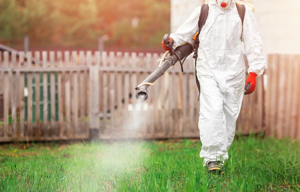 Using pest control spray in yard