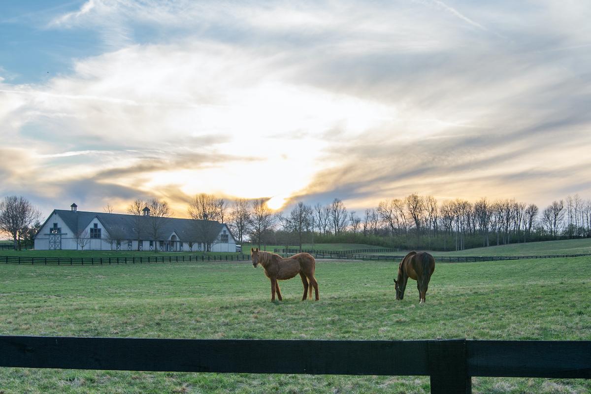 Just outside Nicholasville, Kentucky