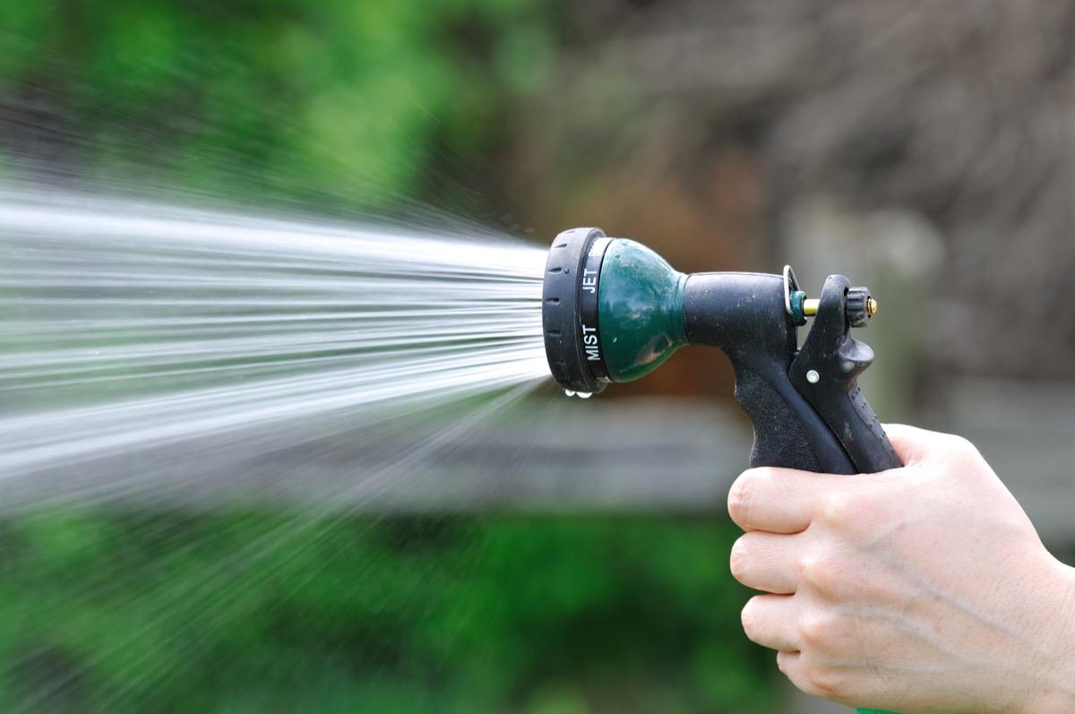 hand holding hose spraying water