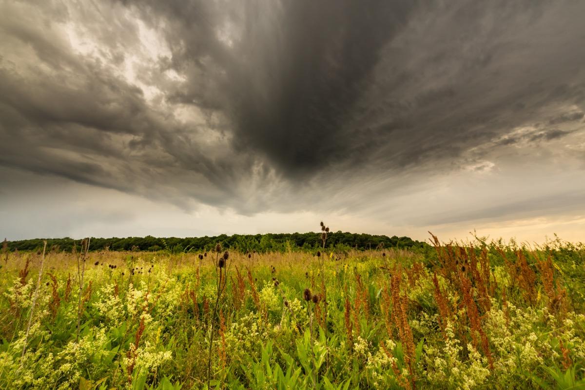 tornado cloud over field